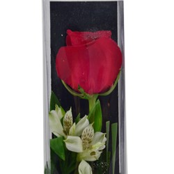 One Rose Box arrangement Valentines Day