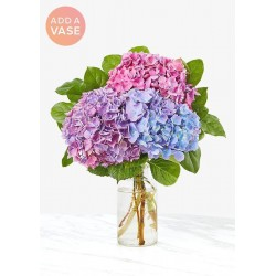 The Andrea Vase Bouquet - Three Hydrangea